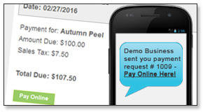 Send Payment requests digital invoice via text or email